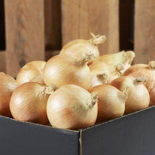 Singapore's Healthiest Online Grocery  Farm Fresh & Organic